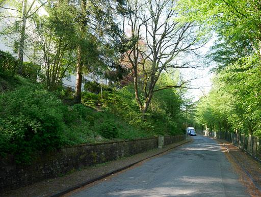 Wilhelm-Passavant-Straße